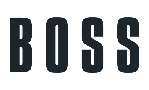 Image result for boss